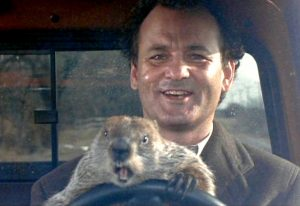 groundhog-day-bill-murray-phil